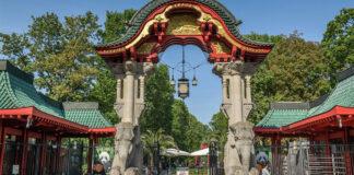 Zoo Berlin Pleite